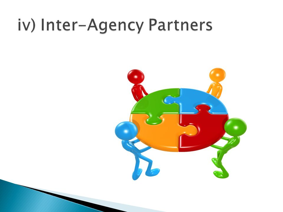 iv) Inter-Agency Partners