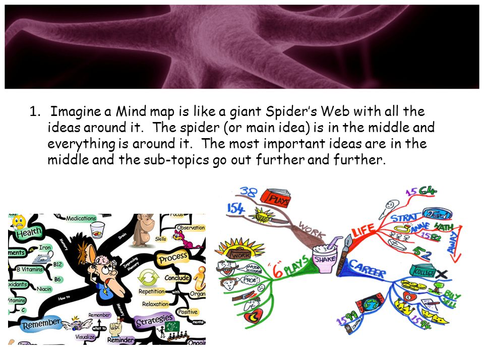 Imagine a Mind map is like a giant Spider's Web with all the ideas around it.