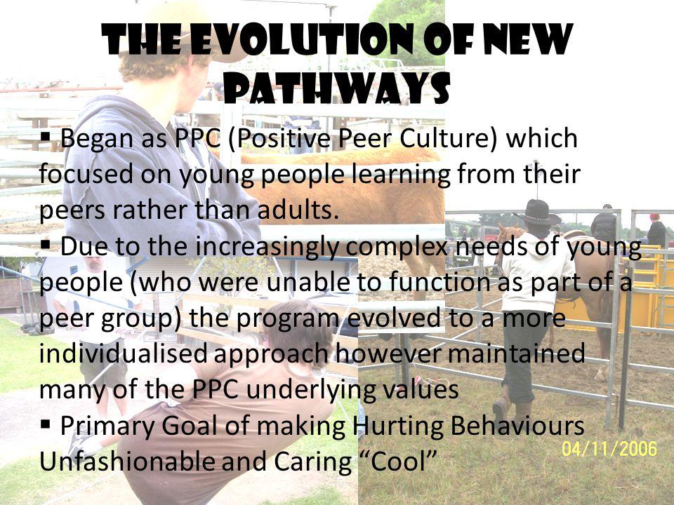 The evolution of new pathways