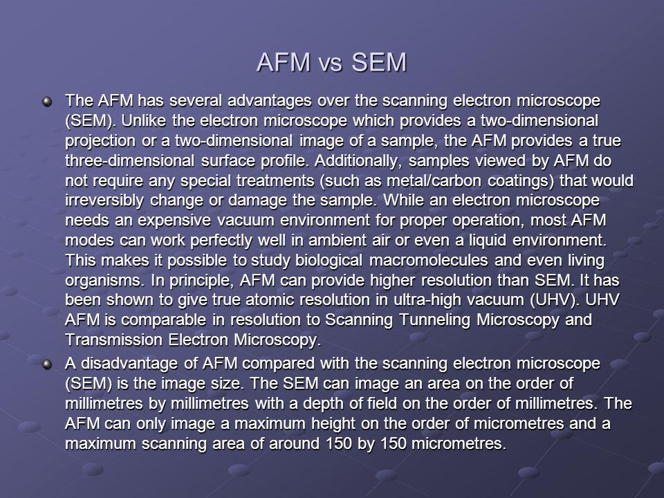 AFM vs SEM
