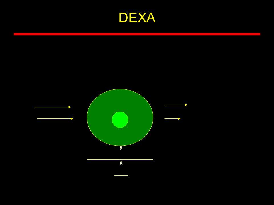 DEXA y x
