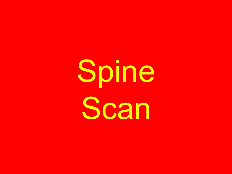 Spine Scan