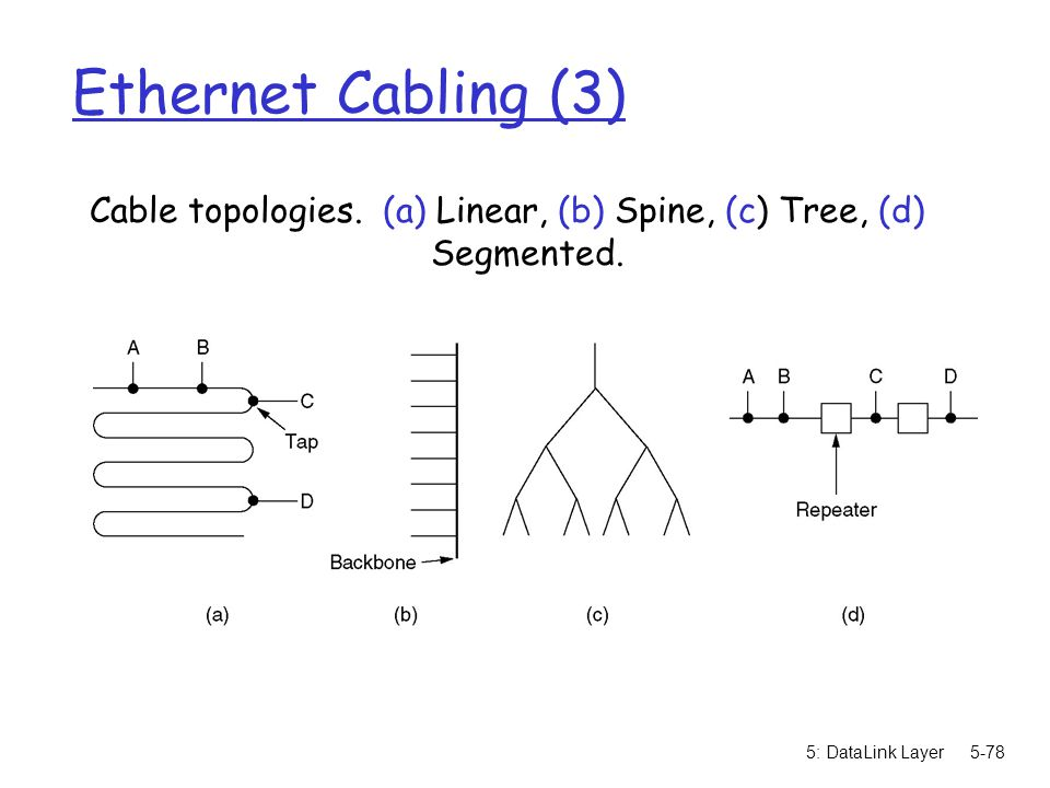 Cable topologies. (a) Linear, (b) Spine, (c) Tree, (d) Segmented.