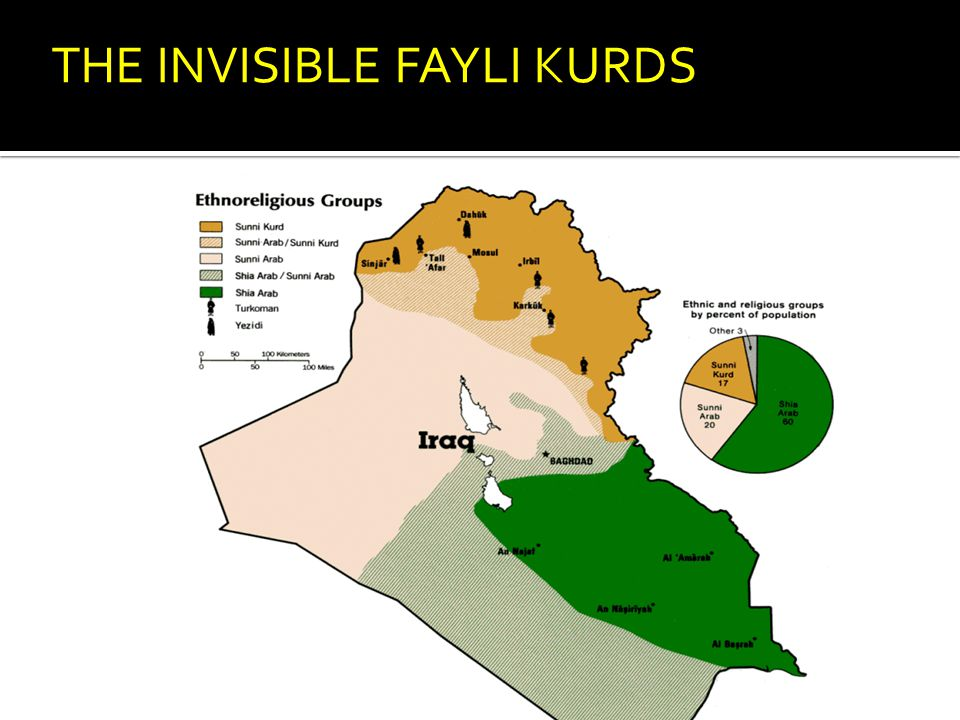 THE INVISIBLE FAYLI KURDS