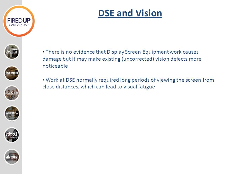 DSE and Vision