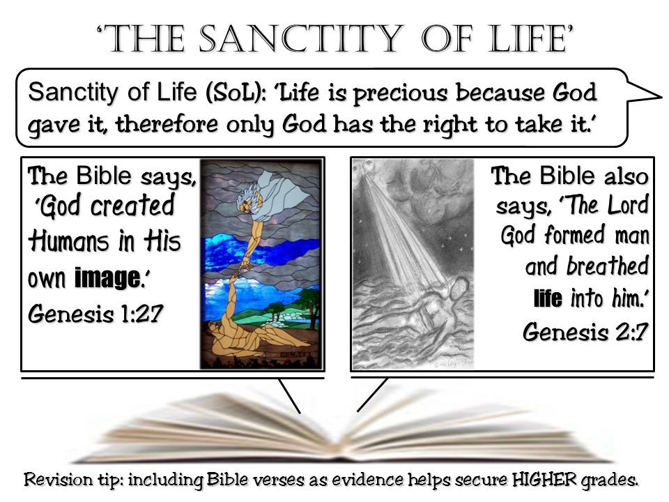 'The Sanctity of life' Humans in His own image.'