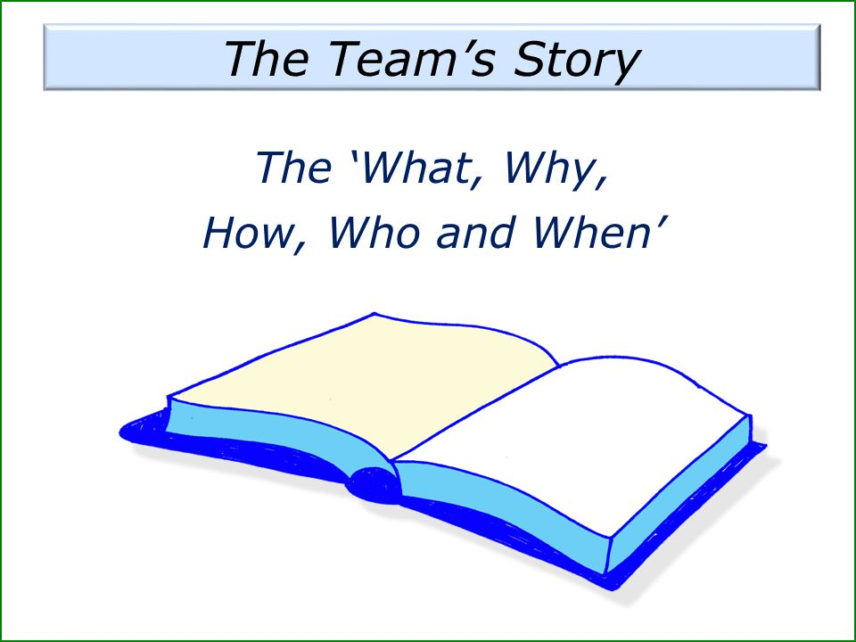 The Team's Story The 'What, Why, How, Who and When'