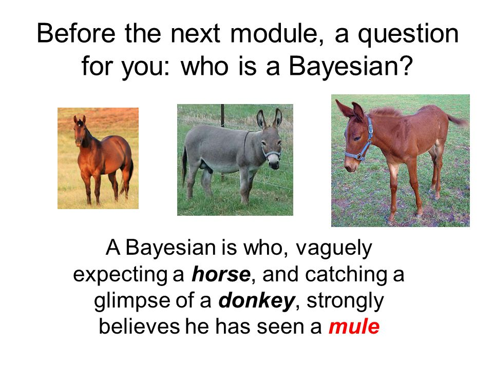 Before the next module, a question for you: who is a Bayesian