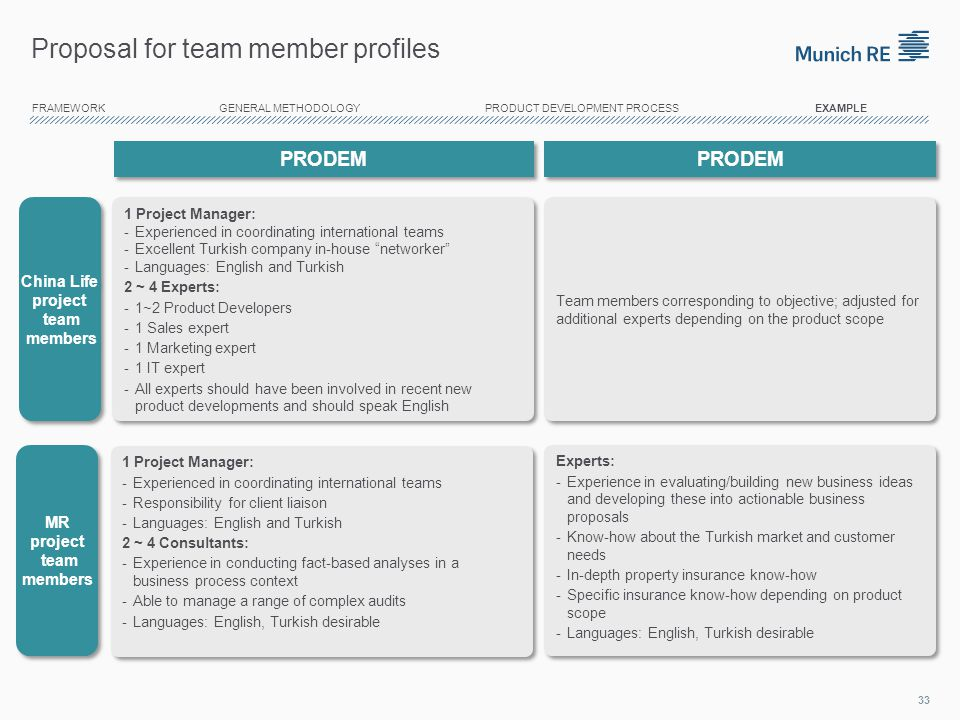 Proposal for team member profiles