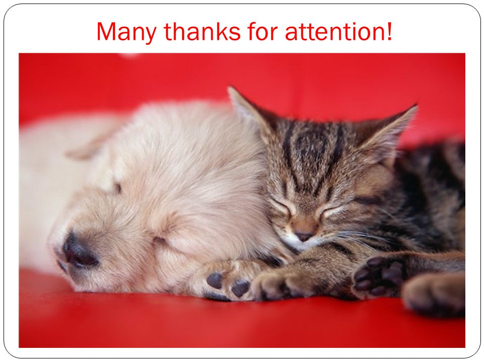 Many thanks for attention!