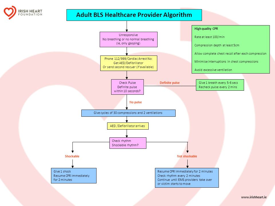 Adult BLS Healthcare Provider Algorithm