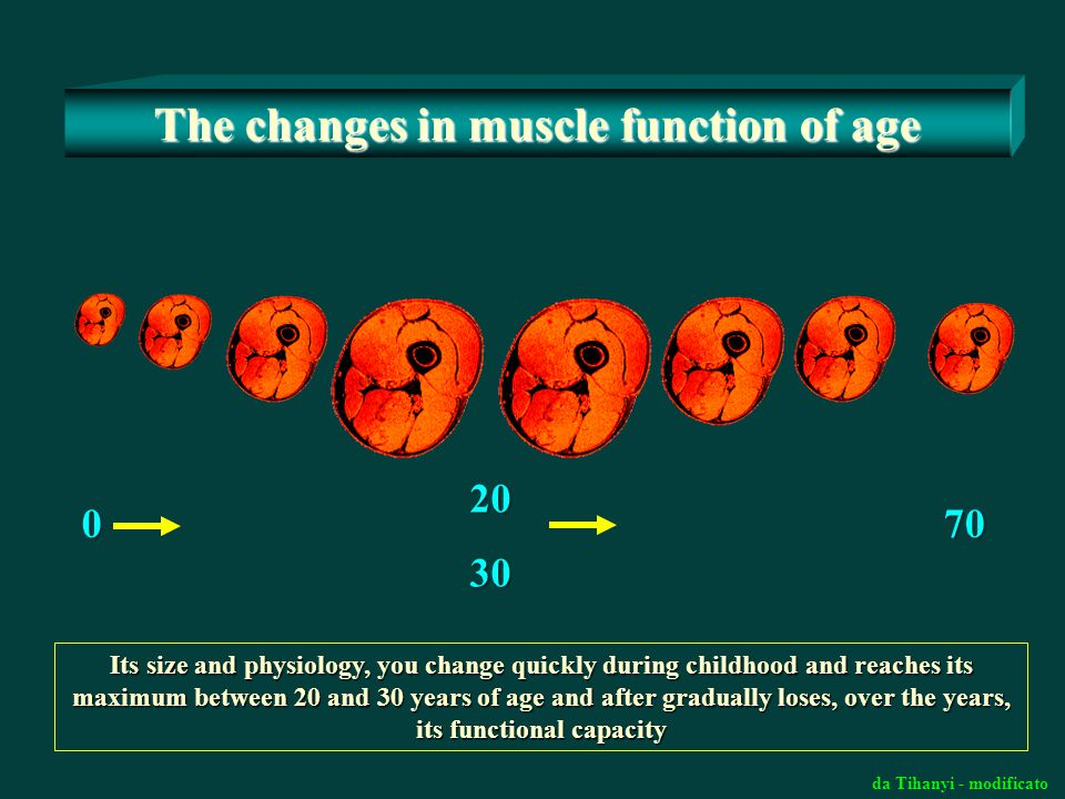The changes in muscle function of age