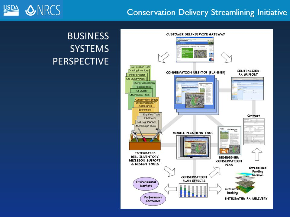 BUSINESS SYSTEMS PERSPECTIVE