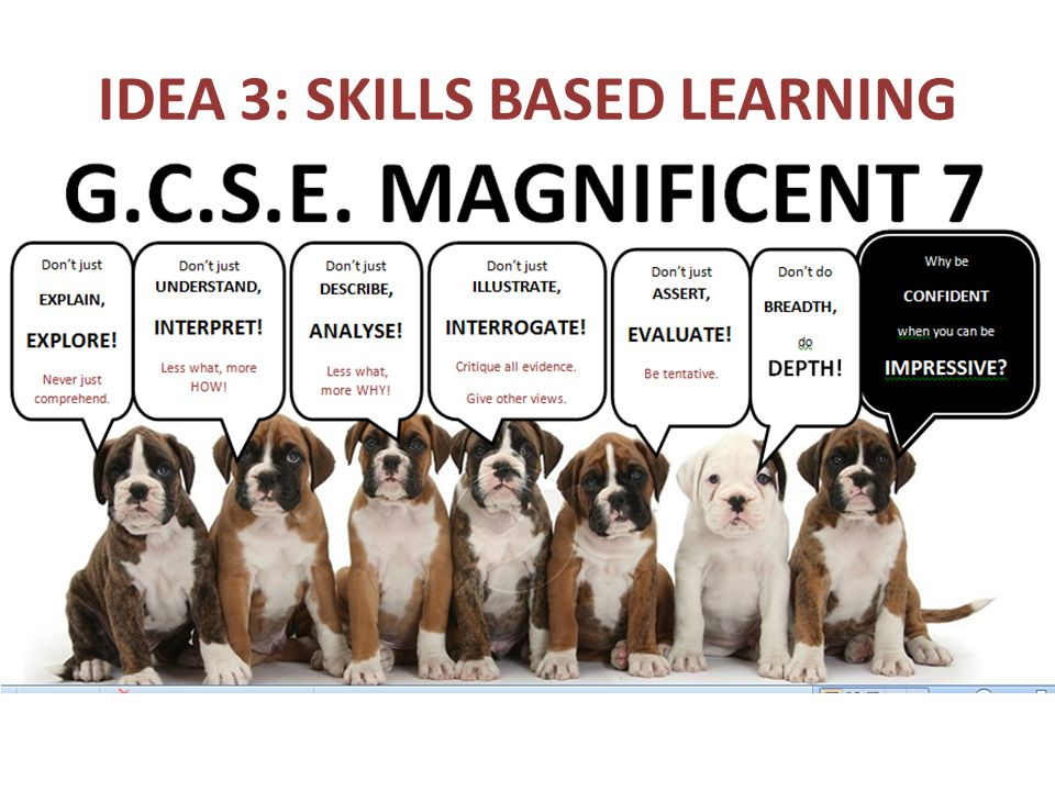 IDEA 3: SKILLS BASED LEARNING