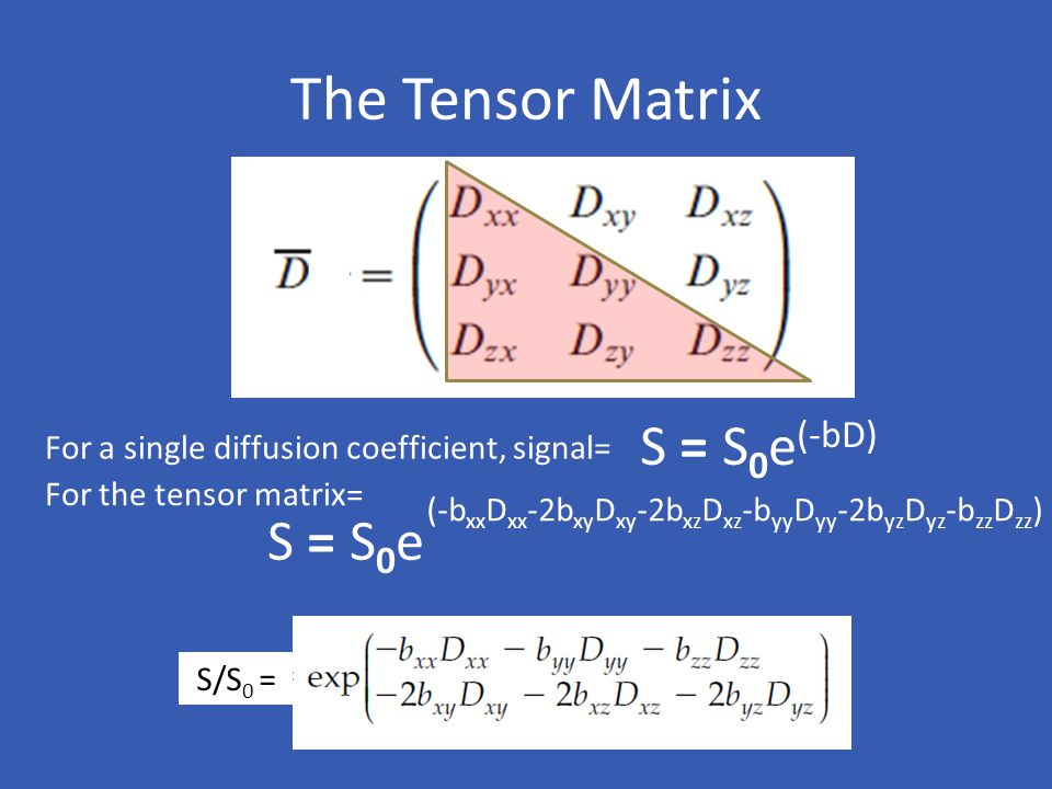 The Tensor Matrix S = S0e(-bD) S = S0e