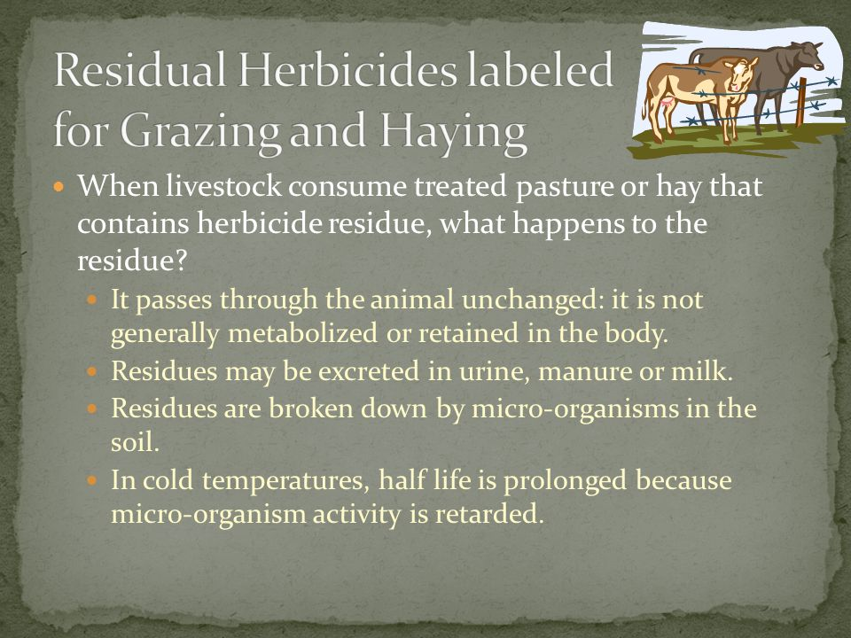 Residual Herbicides labeled for Grazing and Haying