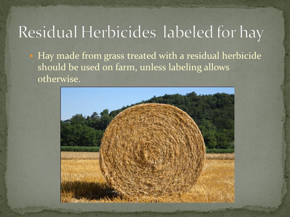Residual Herbicides labeled for hay