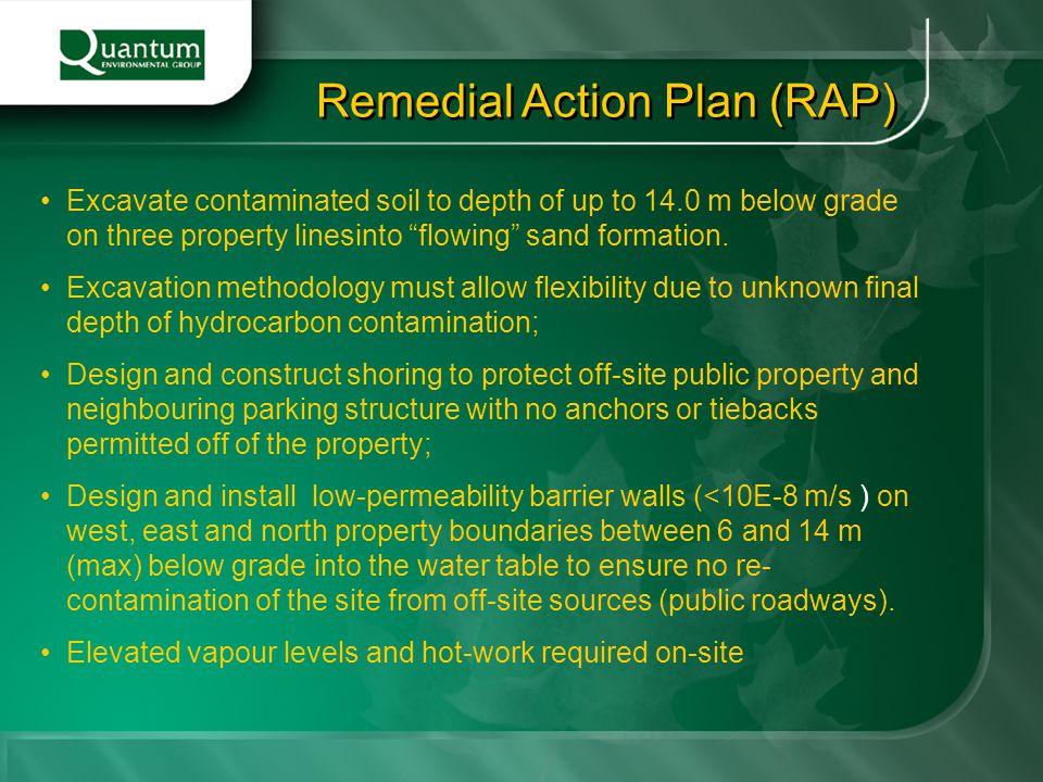 Remedial Action Plan (RAP)