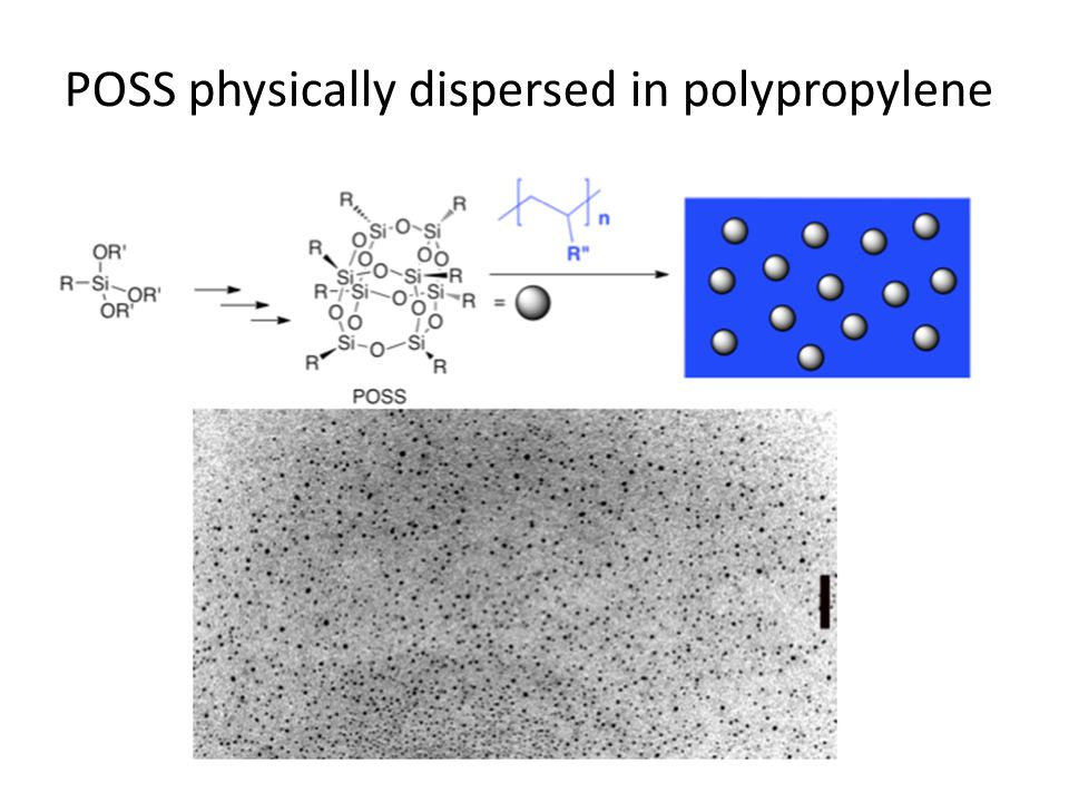 POSS physically dispersed in polypropylene