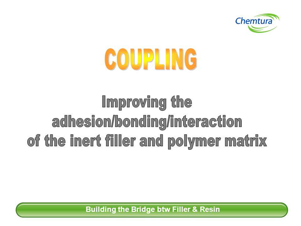 Building the Bridge btw Filler & Resin