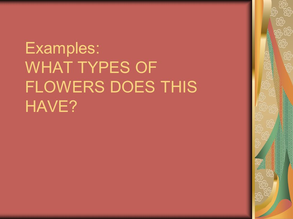 Examples: WHAT TYPES OF FLOWERS DOES THIS HAVE