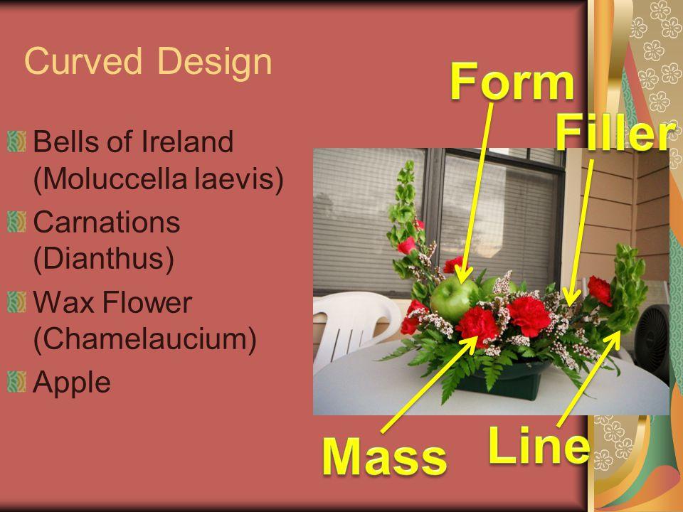 Form Filler Line Mass Curved Design