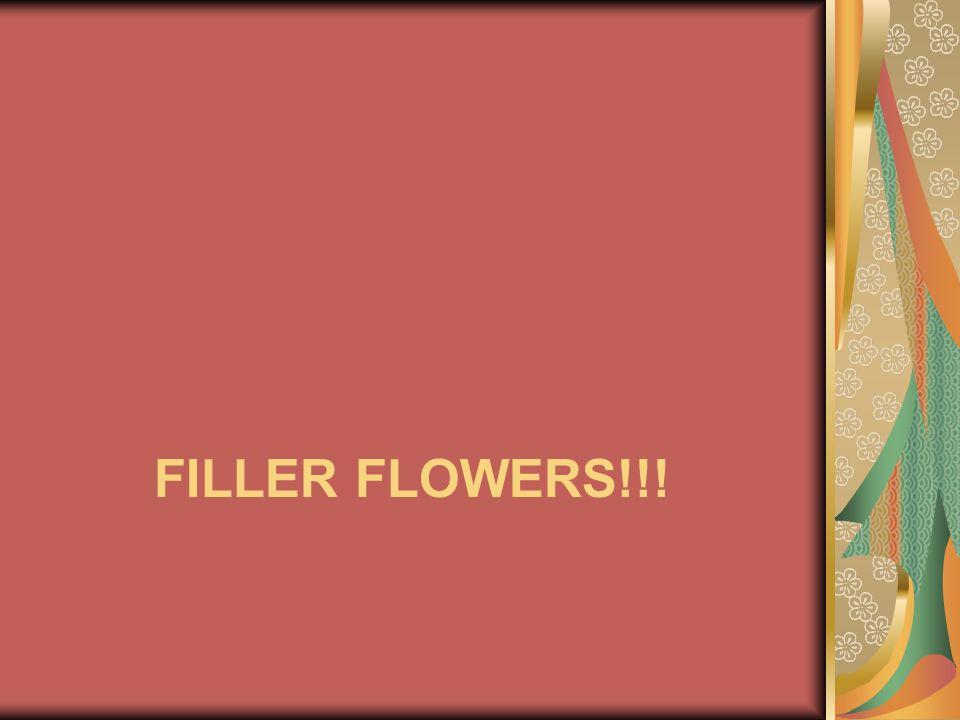 Filler flowers!!!