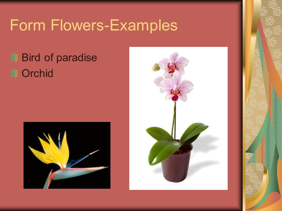 Form Flowers-Examples