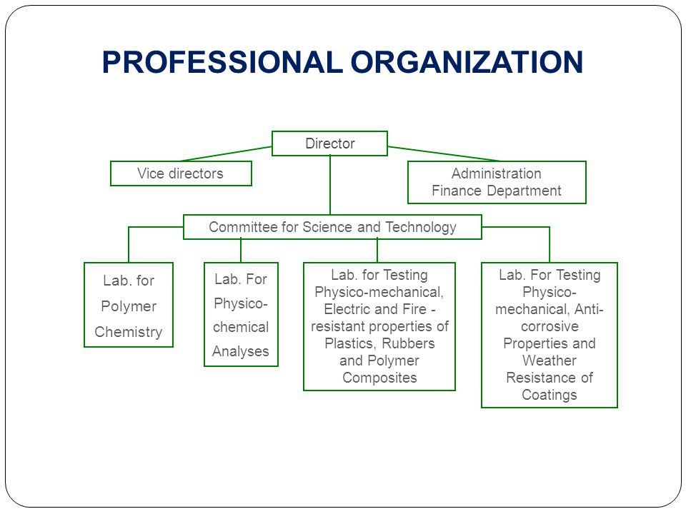 PROFESSIONAL ORGANIZATION