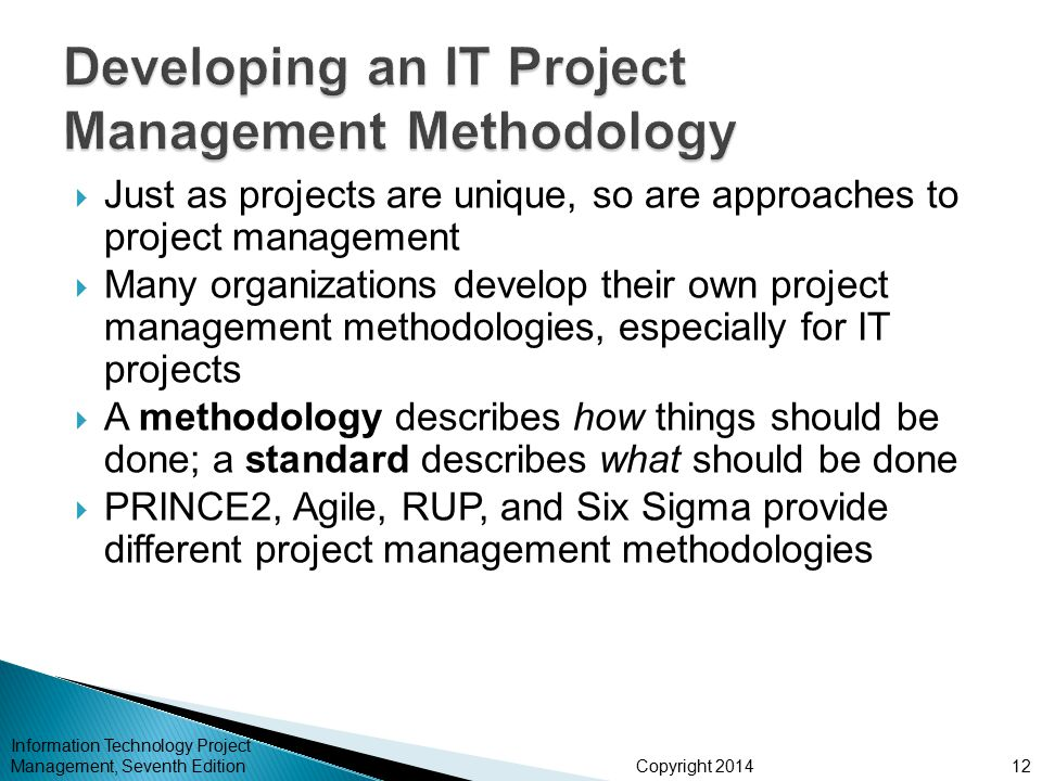 Developing an IT Project Management Methodology