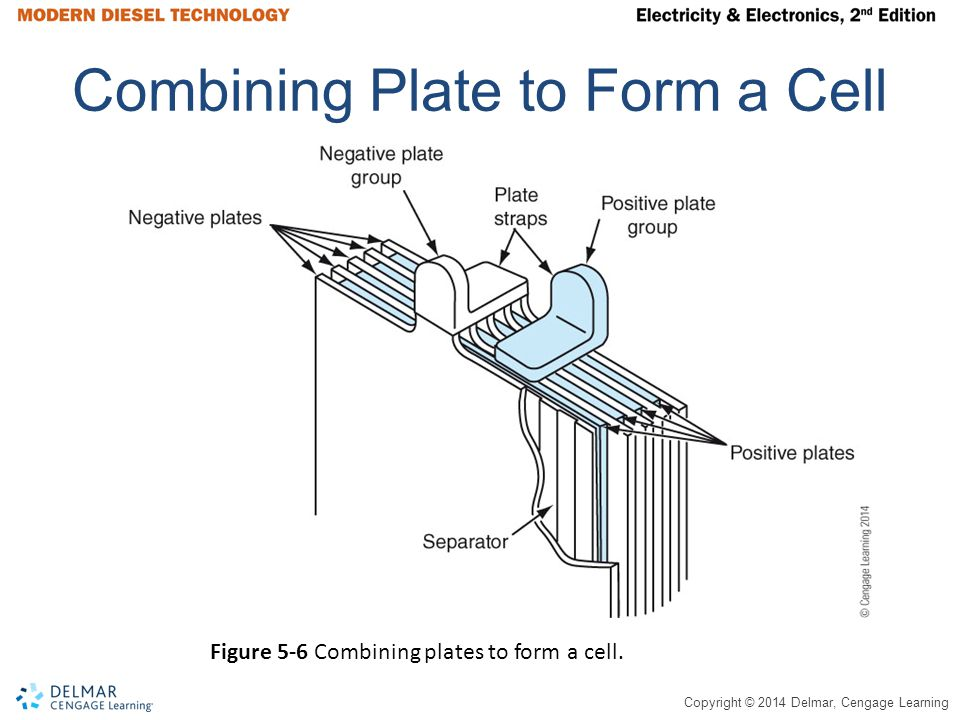Combining Plate to Form a Cell