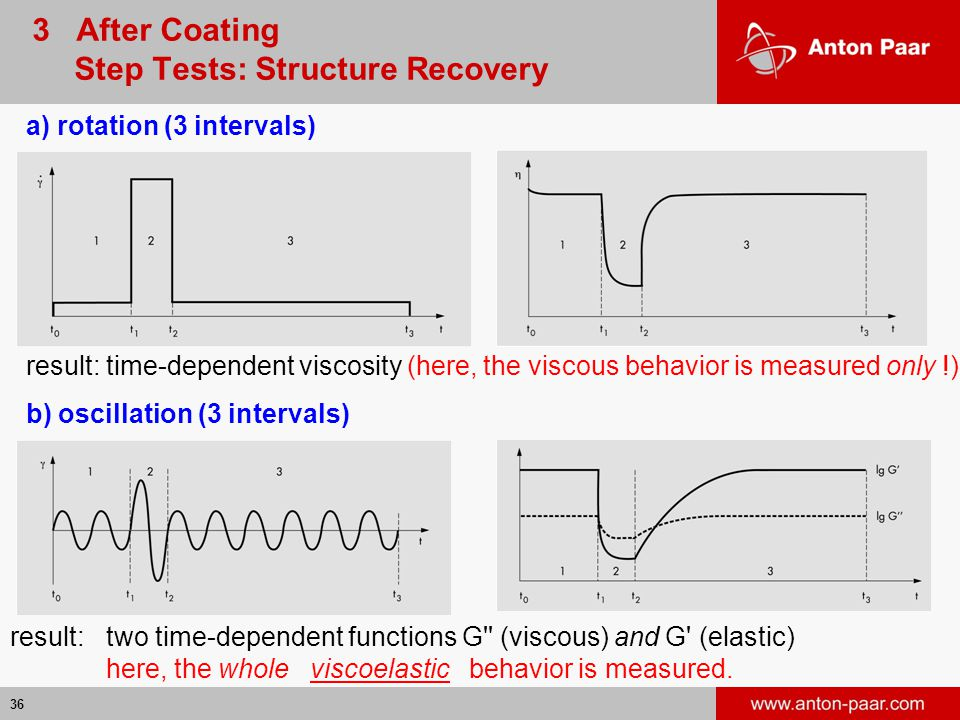 3 After Coating Step Tests: Structure Recovery