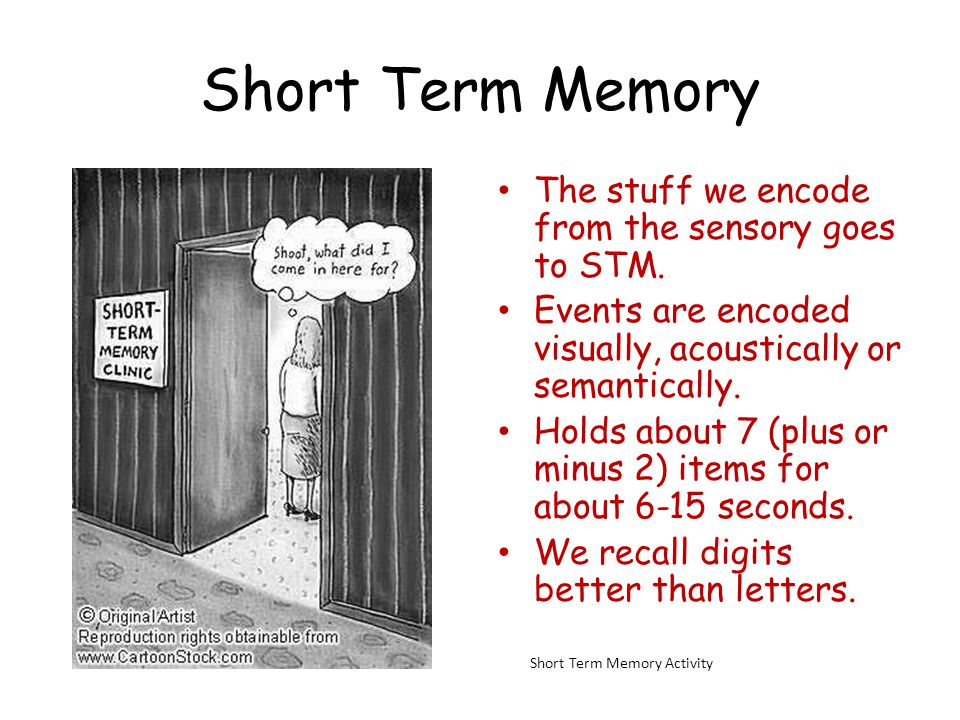 Short Term Memory The stuff we encode from the sensory goes to STM.