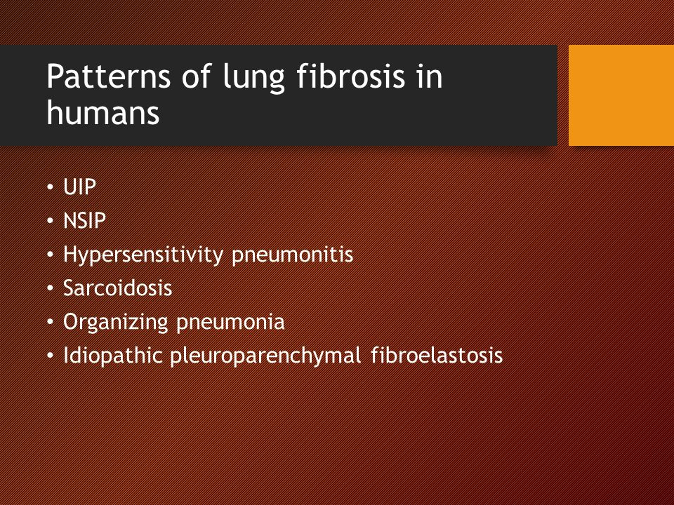 Patterns of lung fibrosis in humans