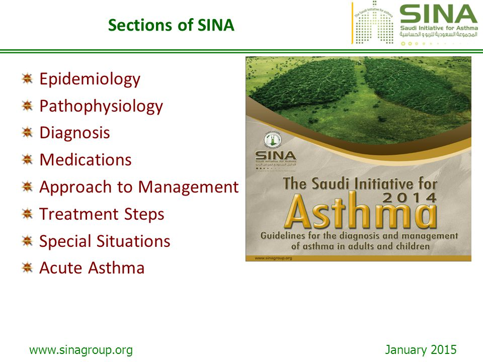 Sections of SINA Epidemiology. Pathophysiology. Diagnosis. Medications. Approach to Management.