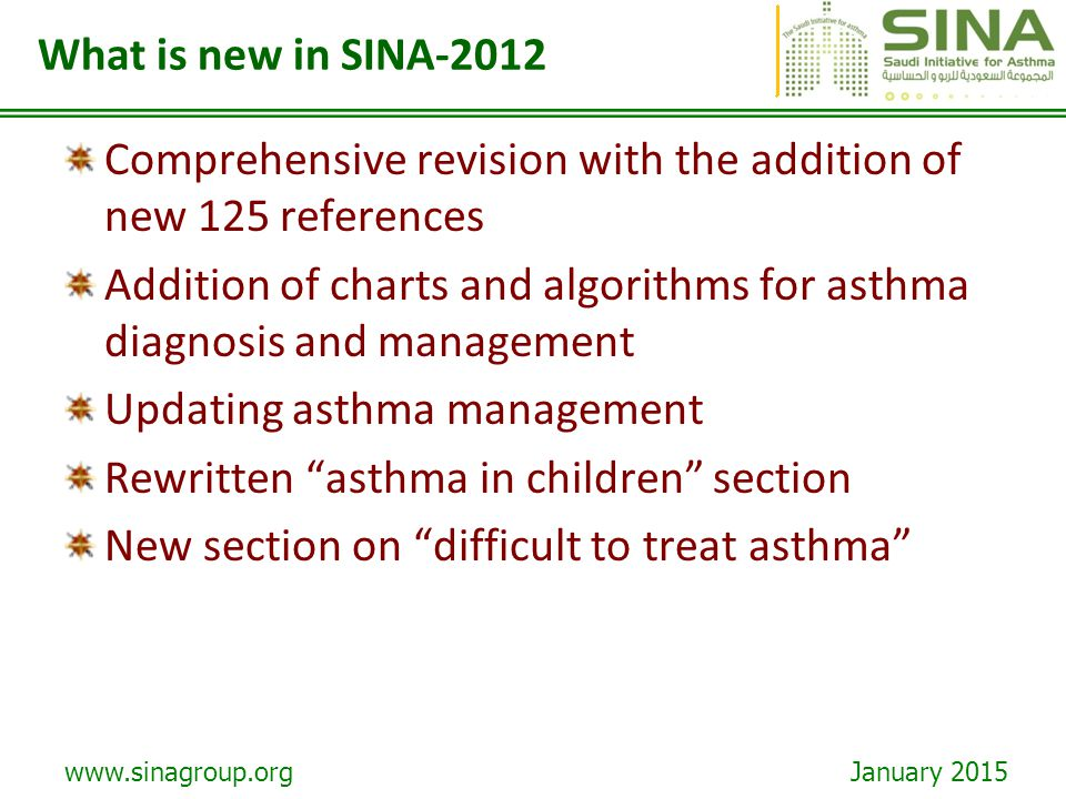 What is new in SINA-2012 Comprehensive revision with the addition of new 125 references.