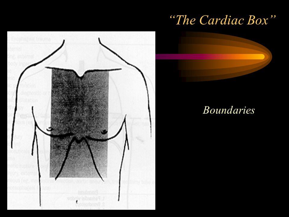 The Cardiac Box Boundaries