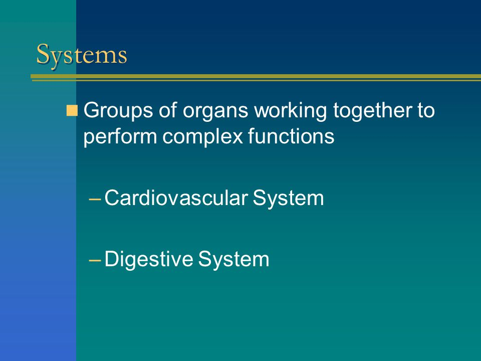 Systems Groups of organs working together to perform complex functions
