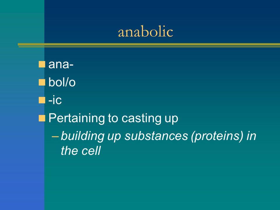 anabolic ana- bol/o -ic Pertaining to casting up