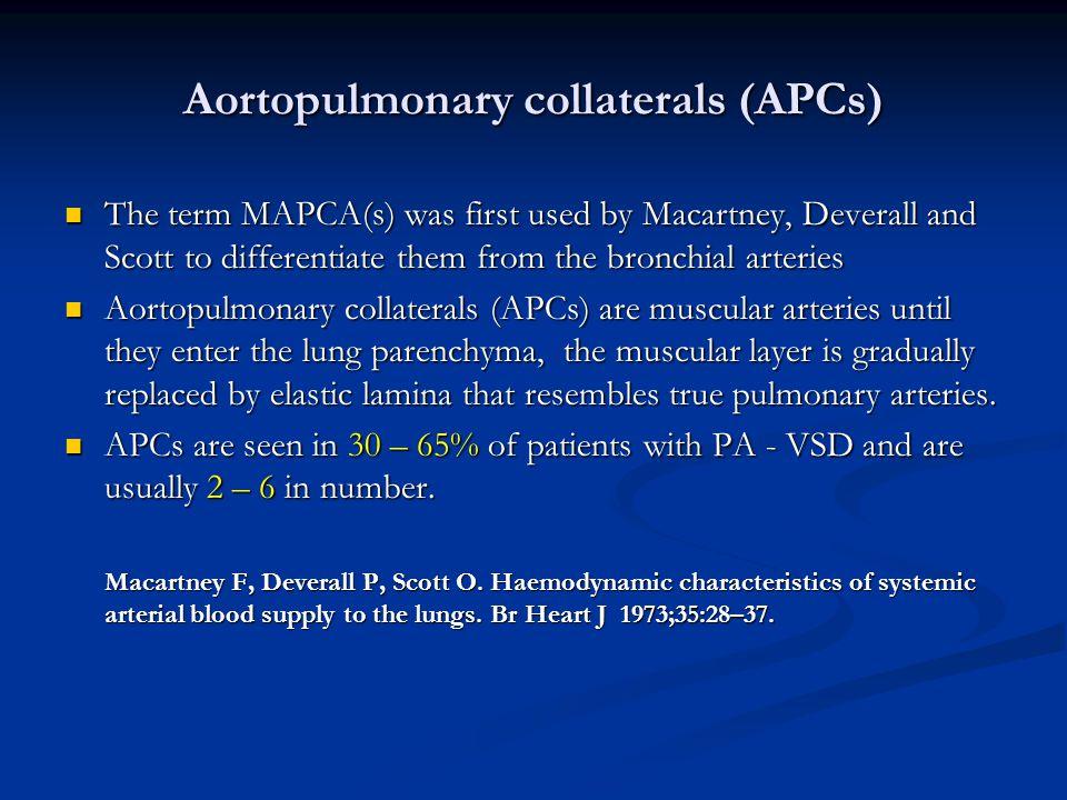 Aortopulmonary collaterals (APCs)