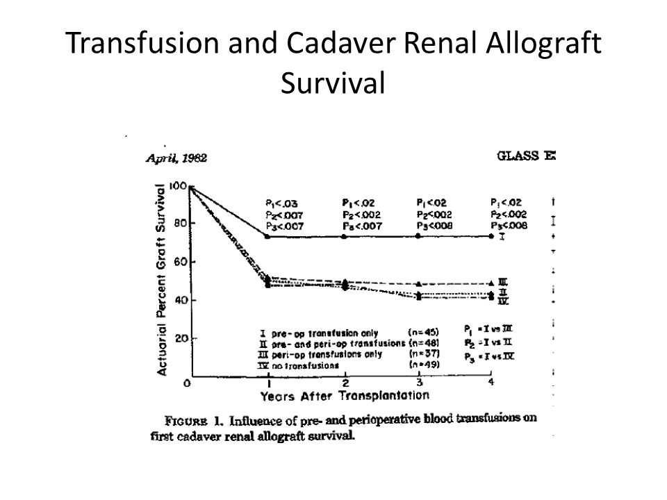 Transfusion and Cadaver Renal Allograft Survival