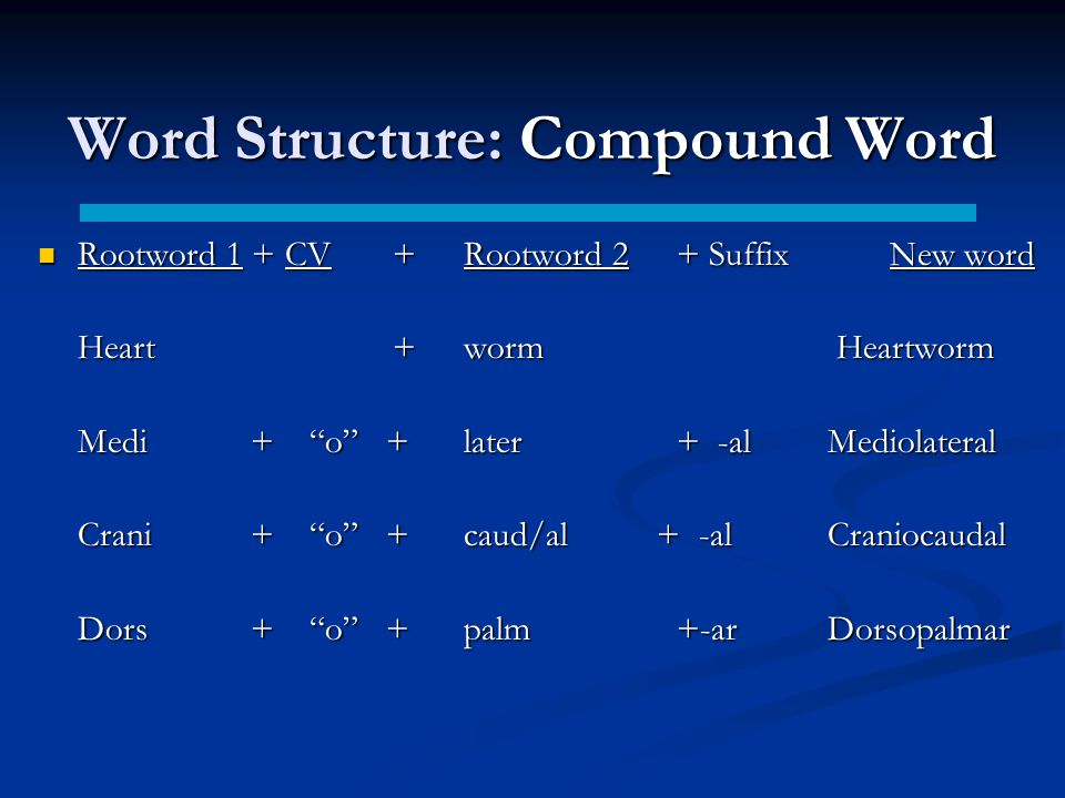 Word Structure: Compound Word