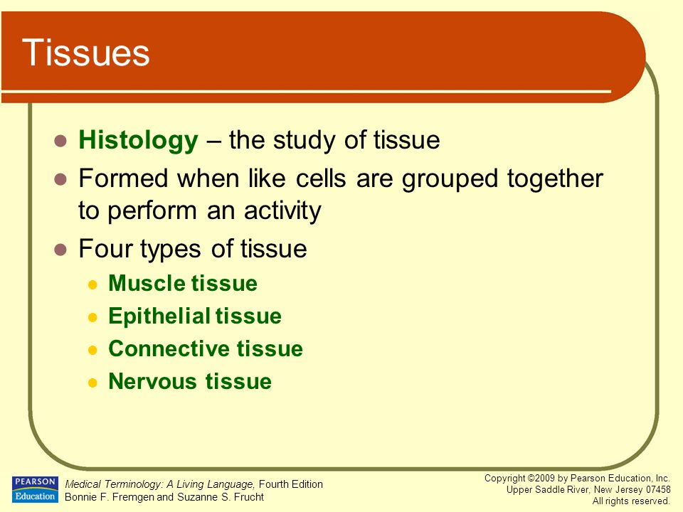 Tissues Histology – the study of tissue