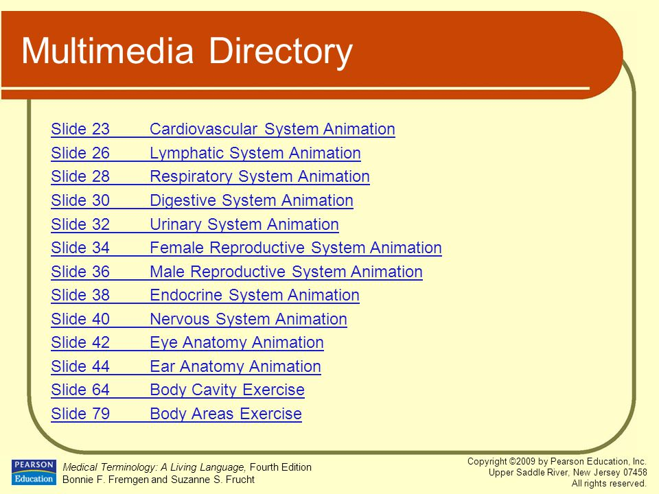 Multimedia Directory Slide 23 Cardiovascular System Animation