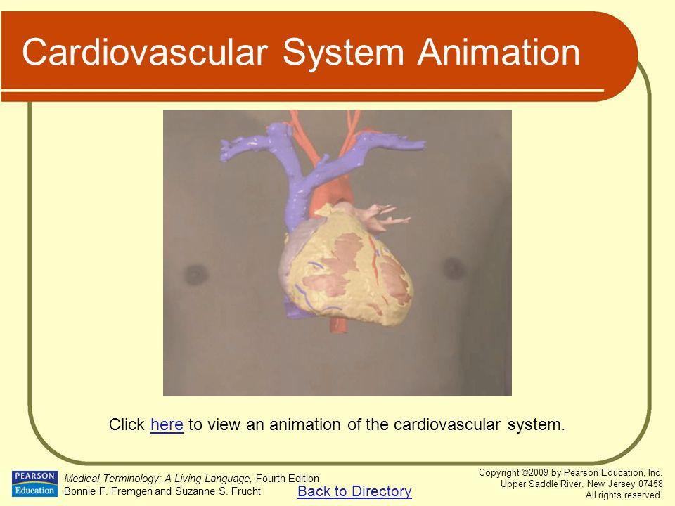 Cardiovascular System Animation