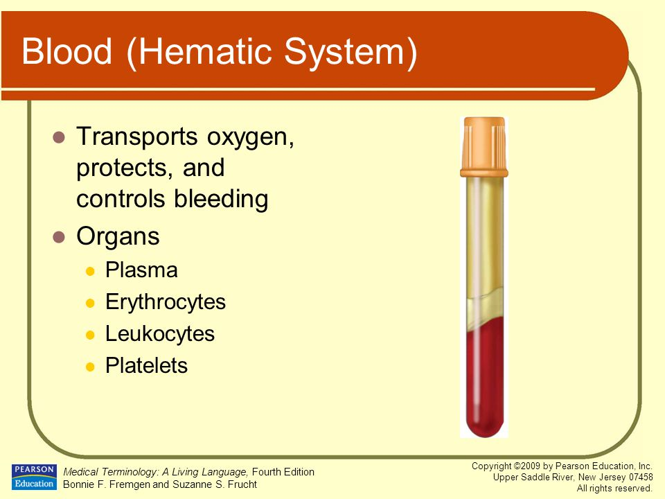 Blood (Hematic System)