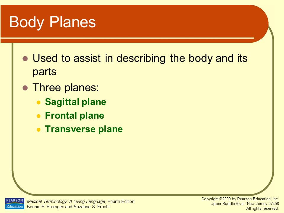 Body Planes Used to assist in describing the body and its parts