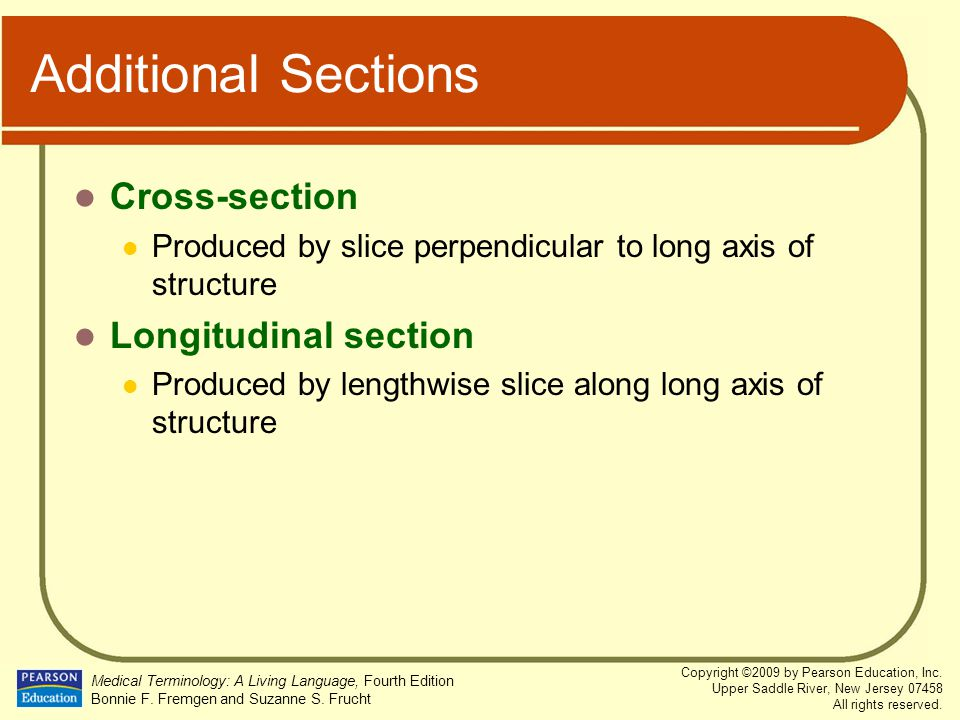 Additional Sections Cross-section Longitudinal section