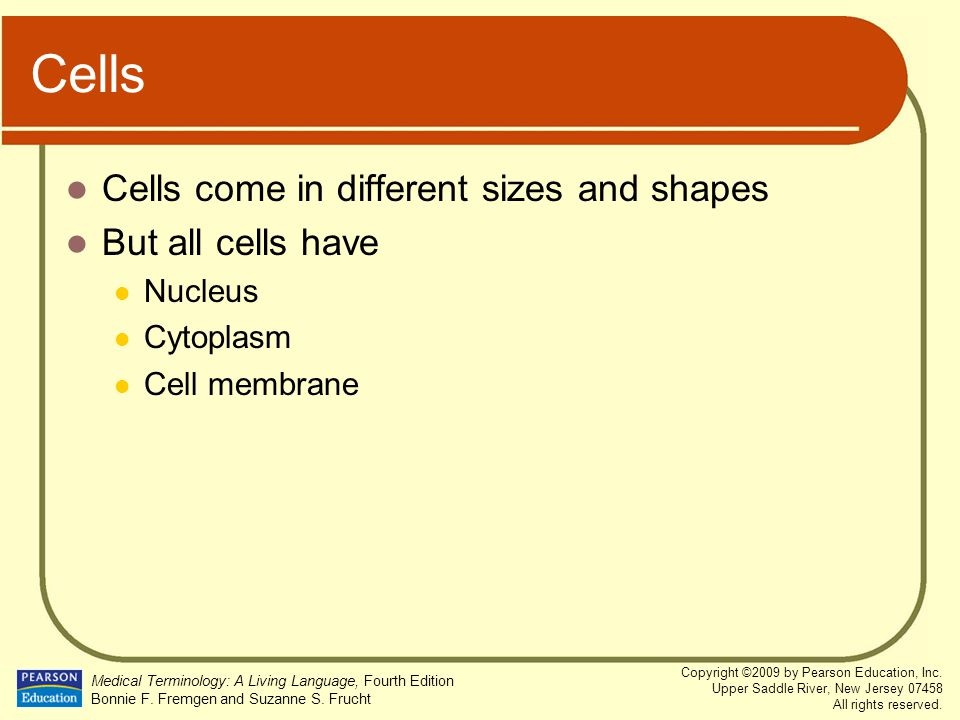 Cells Cells come in different sizes and shapes But all cells have