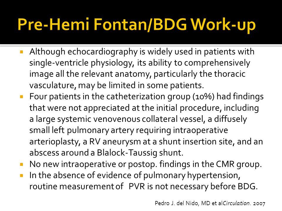 Pre-Hemi Fontan/BDG Work-up